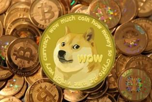 Comment miner des Dogecoins avec un Raspberry Pi.